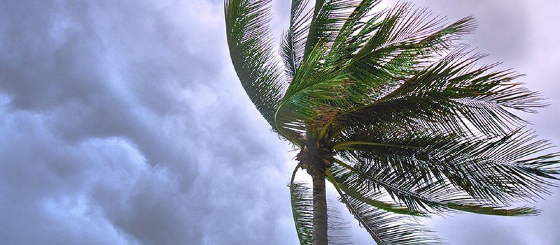 benedict_college_hurricane_florence